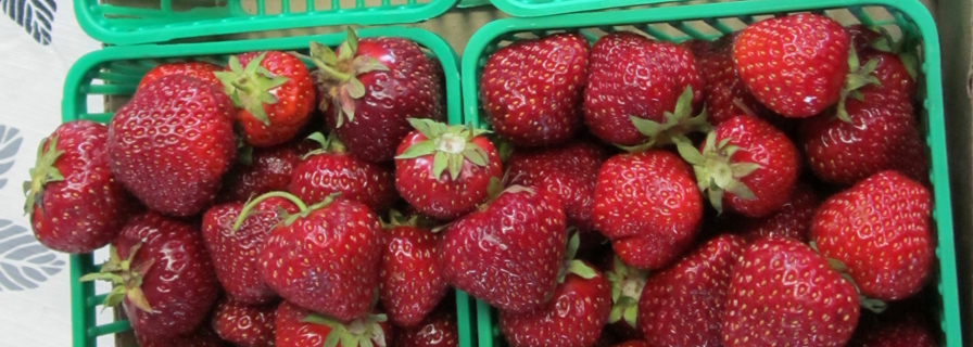 two boxes of fresh strawberries